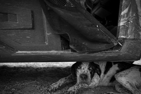 Under The Truck Photography Art   Harry John Kerker Photo Artist