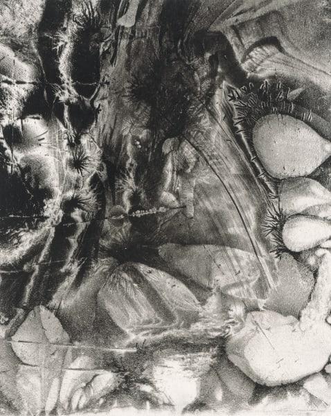 Electrostatic Monotype 18-EM21 by Kim Gatesman