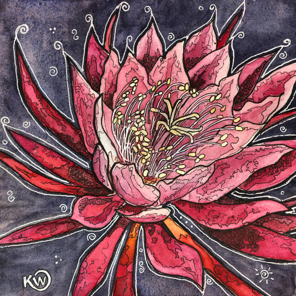 Epiphyllum Art   Water+Ink Studios