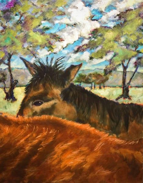Capay Horses Art   Patrick Cosgrove Art and Photography