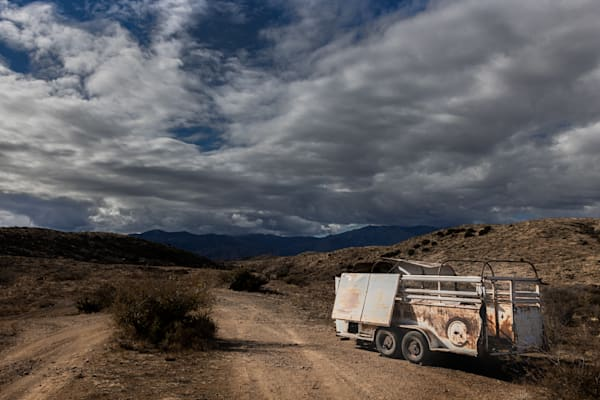Forgotten Cow Trailer Photography Art   Spry Gallery