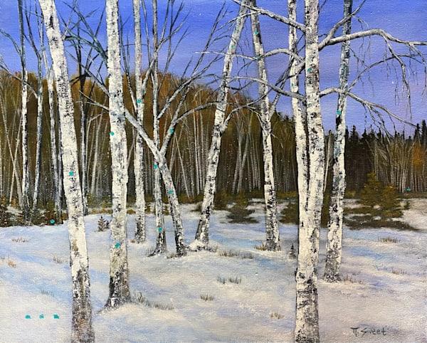 Winter Forest (Print) Art   Marissa Sweet
