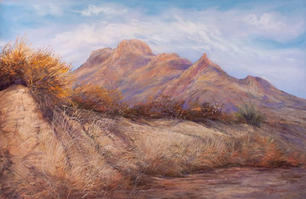 Lindy Cook Severns Art | Desert Waking, print