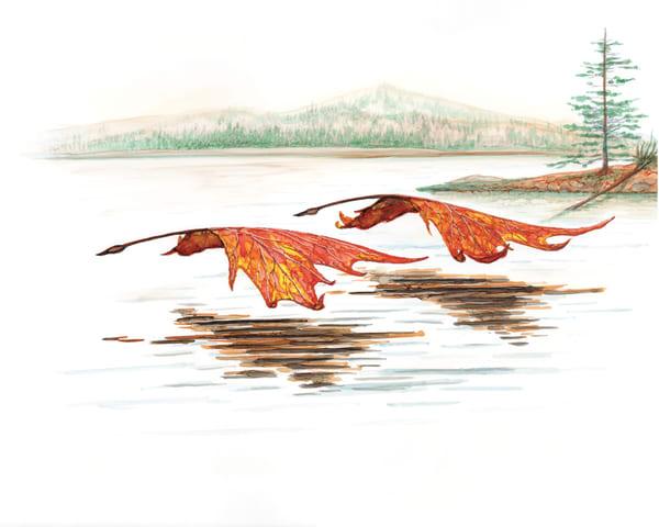 Sketches/Original Concepts