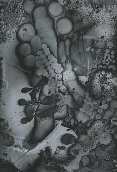 Electrostatic Monotype 18-EM25 by Kim Gatesman