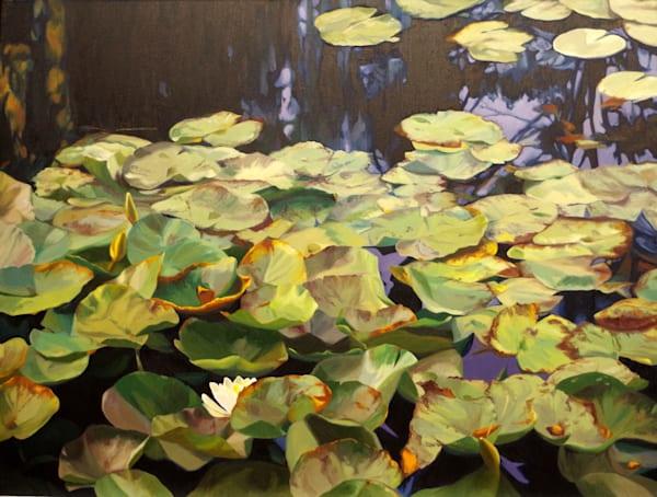 Pond Garden In Fall Art | Helen Vaughn Fine Art
