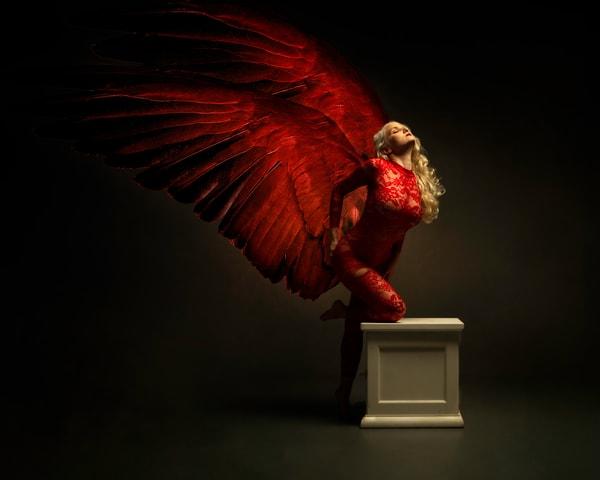 Red Angel (Liz Ashley)