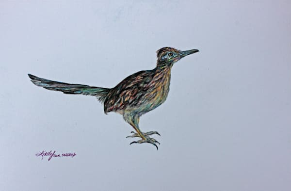 Lindy Cook Severns Art | Roadrunner, print