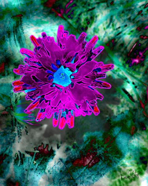 Flower 53 Art | Cincy Artwork