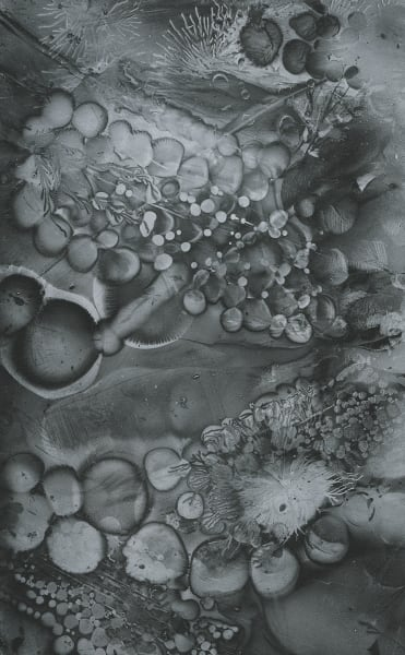 Electrostatic Monotype 18-EM27 by Kim Gatesman