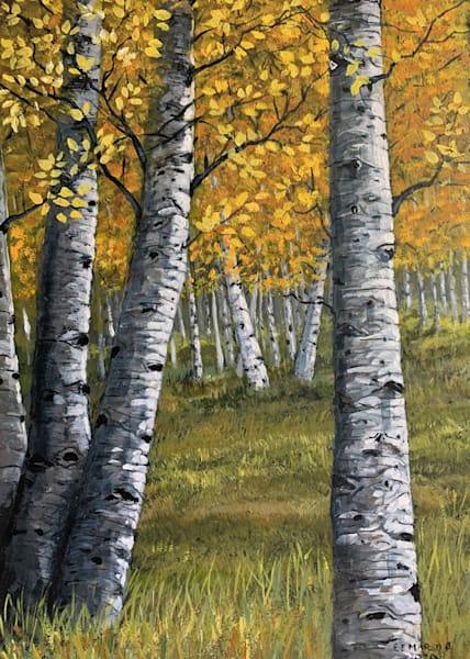 Yellow Birch Trees Art   Skip Marsh Art