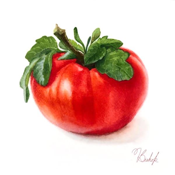 Tomato Art | victoriabishop.art