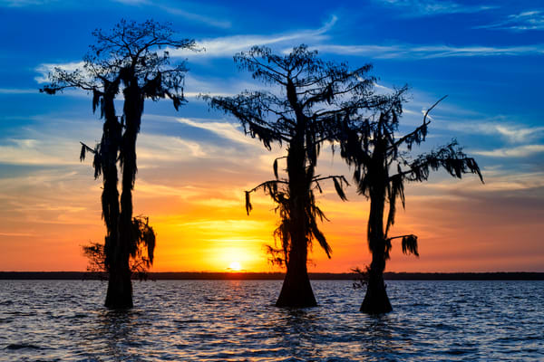 New Year's Sunset - Louisiana swamp sunset photography prints
