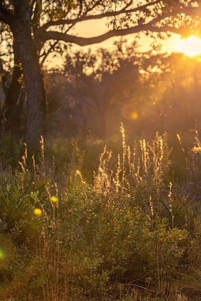 Kissimmee Sun Set Photography Art | kramkranphoto