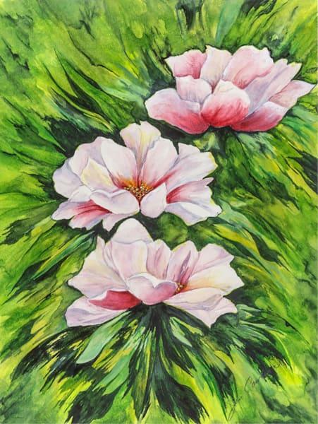 Beach Rose Art | capeanngiclee