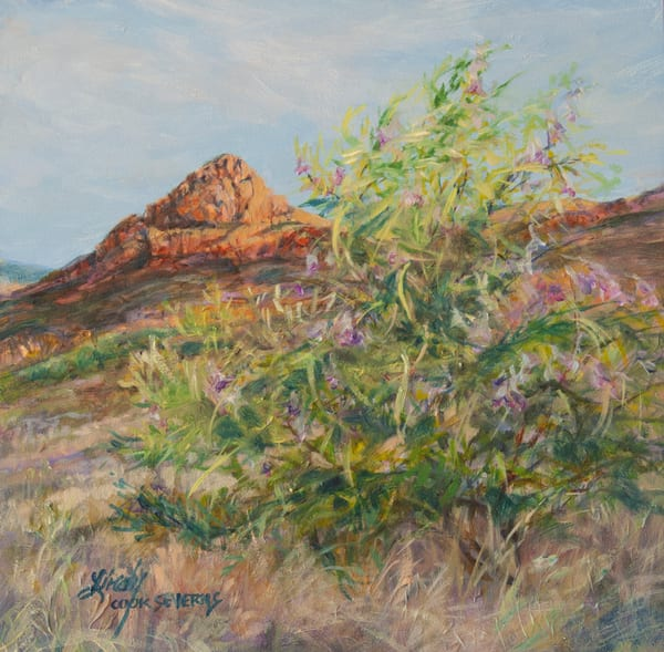 Lindy Cook Severns Art | Desert Willow Dawn, print