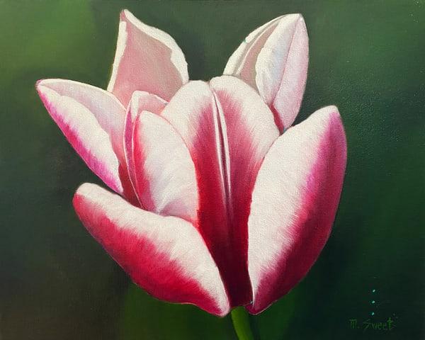 Bloom Water Lily (Print) Art | Marissa Sweet