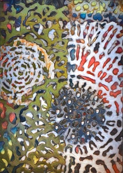 Radiolaria 1 Art | smalljoysstudio