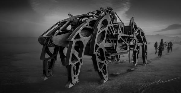Playa Crawler Photography Art   Harry John Kerker Photo Artist