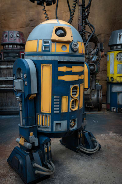 Blue And Yellow R2 Unit Photography Art | William Drew Photography
