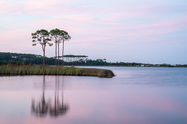 Western Lake Summer Sunrise Art   Modus Photography