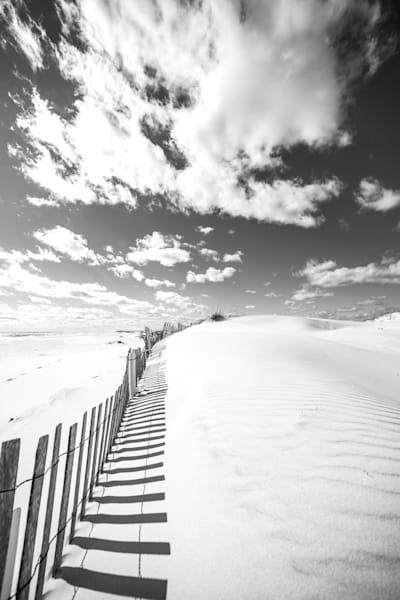 Dune Shadows Art | Modus Photography