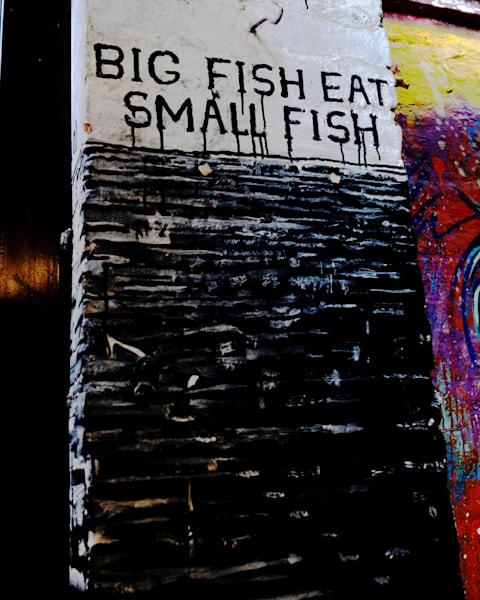 Big Fish East Small Fish Photography Art | LenaDi Photography LLC