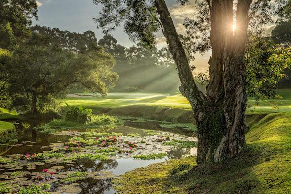 Hkgc Scenic Pond A 06 17 Photography Art | Dave Sansom Photography LLC