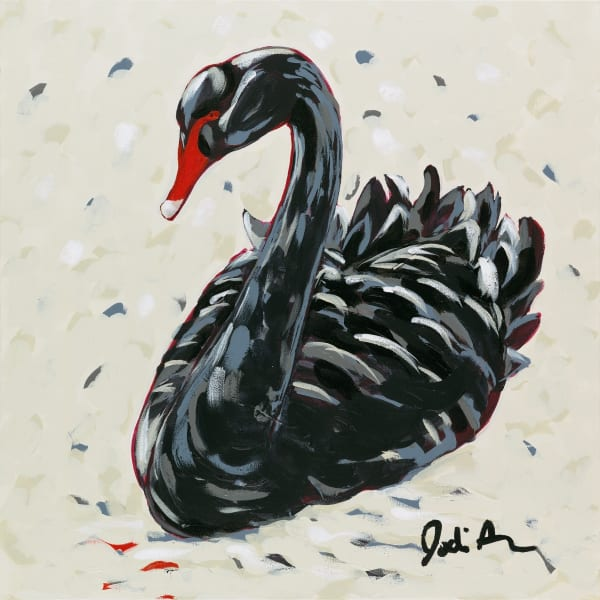 Portrait of a black swan on a white background.