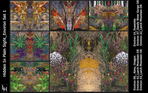 Environs Note Card Set 1 | Loree Harrell Art