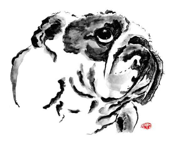 Bulldog 1 Art | Youngi-Sumistyle pets