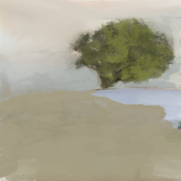Solitary Art | Peter Anderson Studio