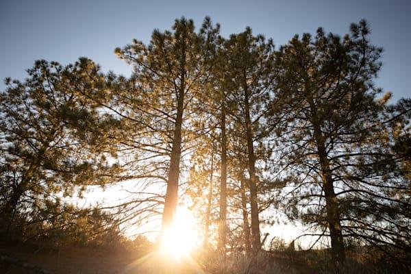 Coulter Sunset Photography Art | Sydney Croasmun Photography