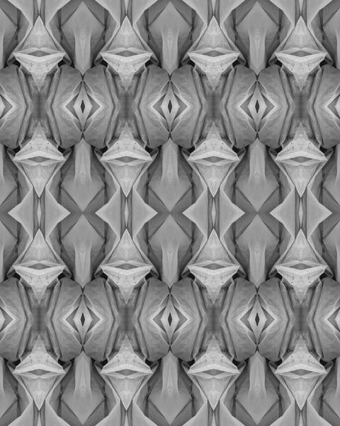 Photo-fusion print by Marsha Gray Carrington