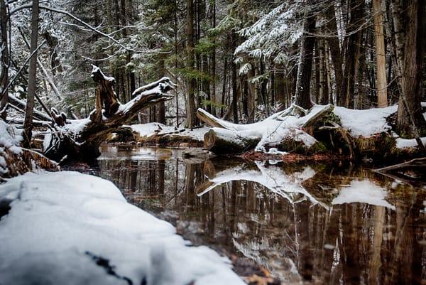 winter stream snow logs calming