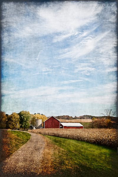 Late Harvest Art | Light Pixie Studio