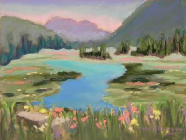 Sierra Wildflowers