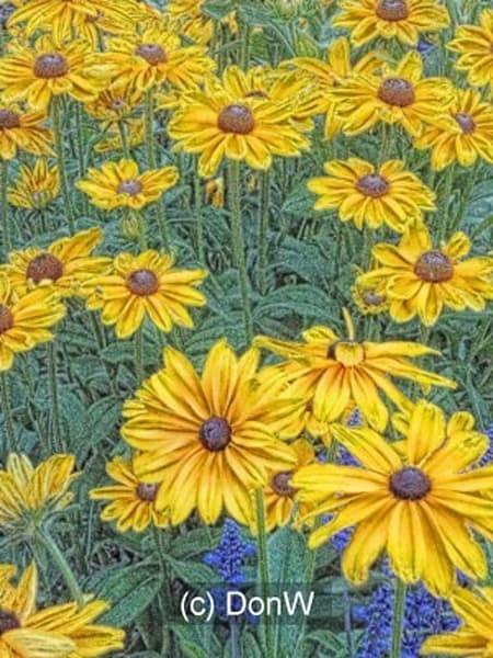 flowers, gold, yellow, summer, print, miniature