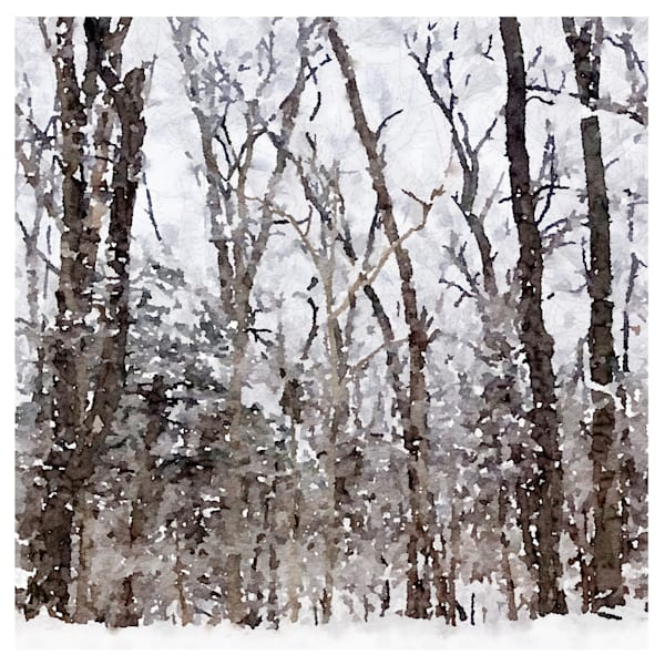 Frozen Fog Photo, watercolor-print, snowy-woods,