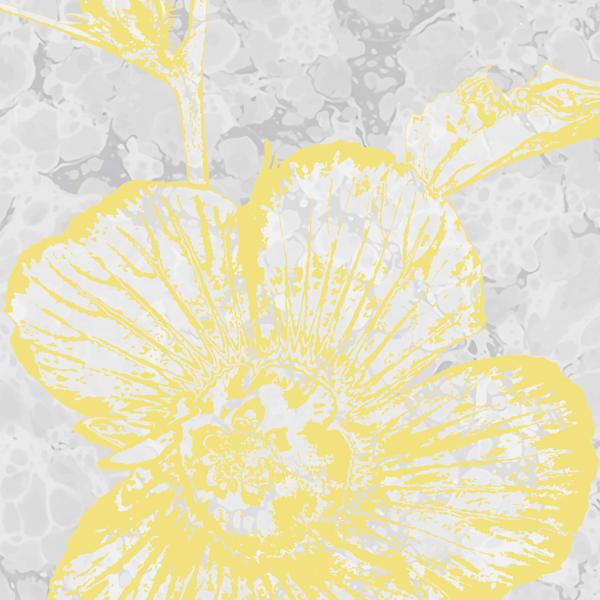 Calarca Hibiscus No. 21 Art | Elena Lipkowski Fine Arts, LLC