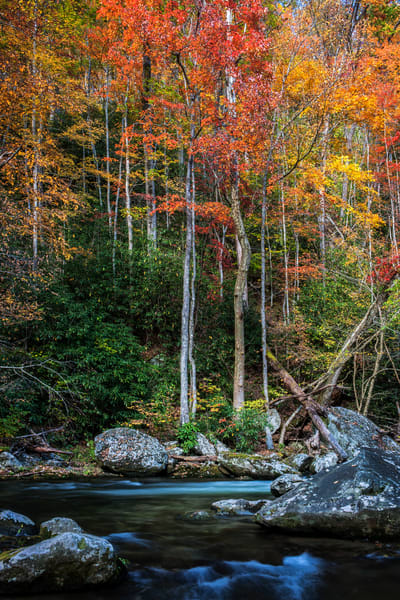 Standing Along The River Photography Art | Ken Smith Gallery