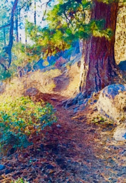 Meadow Camp Trail Art | Scott Dyer Fine Art
