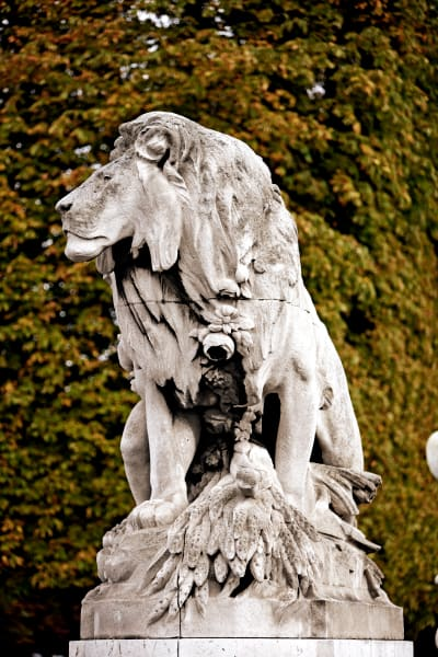 Shop for Photographic Art of Paris, France | Watchful Lion