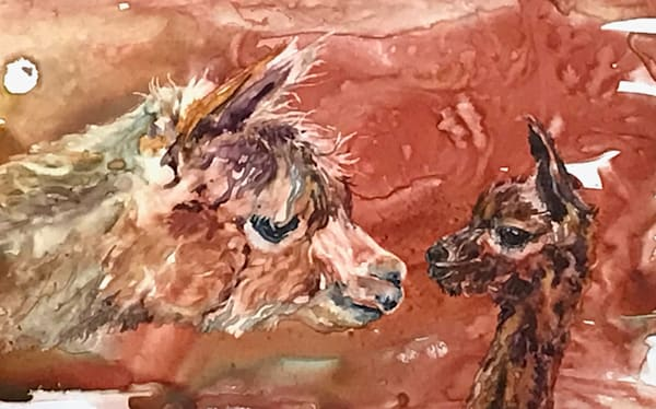 Alpaca Love Art | Karen Bishop Artist