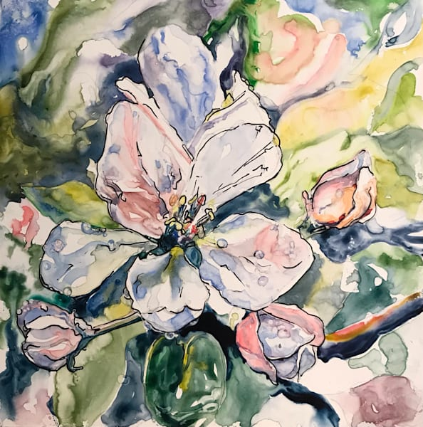 Apple Blossom Art | Karen Bishop Artist