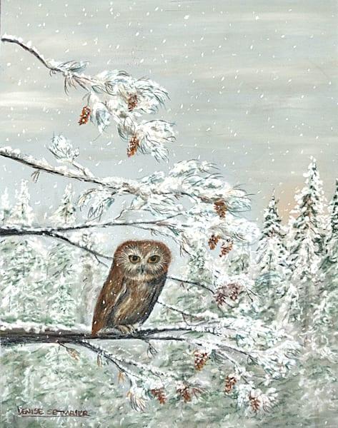 Little Owl In The Woods Art   Cincy Artwork