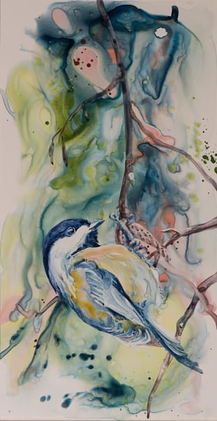Black Capped Chickadee Art | Karen Bishop Artist