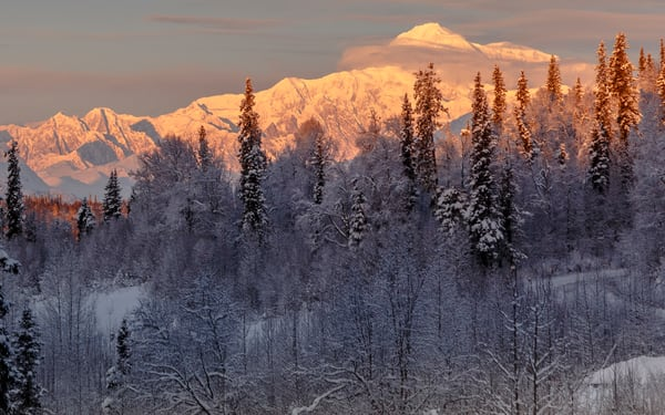 Winter landscape of clearing storm over the south side view of Denali (Mt. Mckinley) and  the Alaska Range and snow-covered forest. Southcentral, Alaska    Photo by Jeff Schultz/SchultzPhoto.com  (C) 2016  ALL RIGHTS RESVERVED