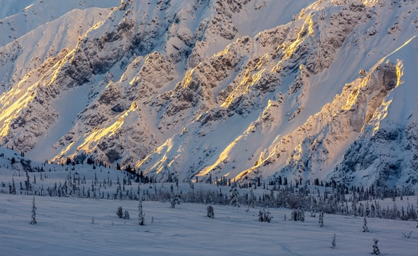 Winter landscape of snow and frost-covered trees with Chugach Mountains at sunrise in the Eureka area of southcentral, Alaska.   Photo by Jeff Schultz/SchultzPhoto.com  (C) 2018  ALL RIGHTS RESERVED