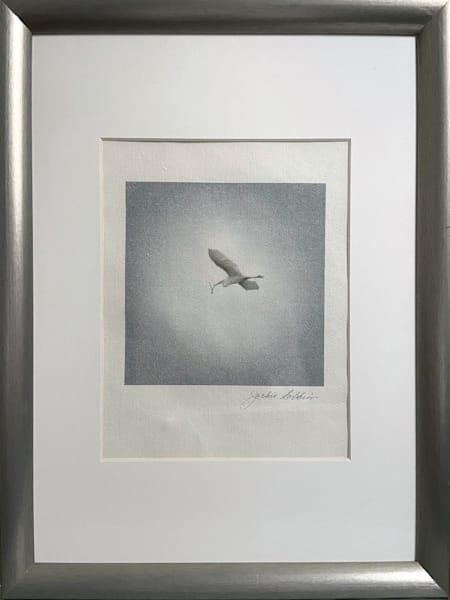original, ricepaper, oneofakind, framedreadytohang, relatedthemes, hanginmultiples, jackierobbinsstudio, photographicprints, buyartonline